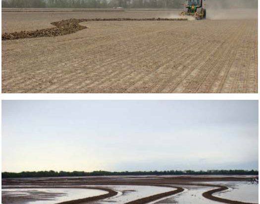 Trimble provides farmers with a guidance line. The smoothed contour line is transferred to the in-field display and can be used with an automated steering solution, enabling farmers to more efficiently install rice levees. (Images courtesy of Delta Positions Inc.)